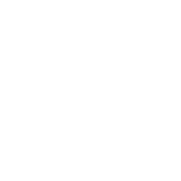 Central Equity Group